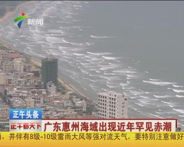 广东惠州海域出现近年罕见赤潮