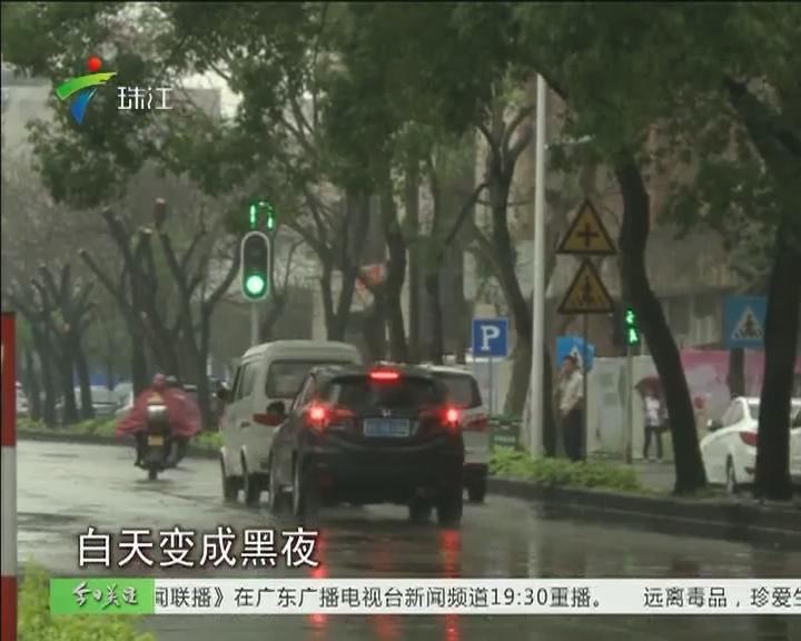 肇庆:暴雨冰雹 城区倒树一片