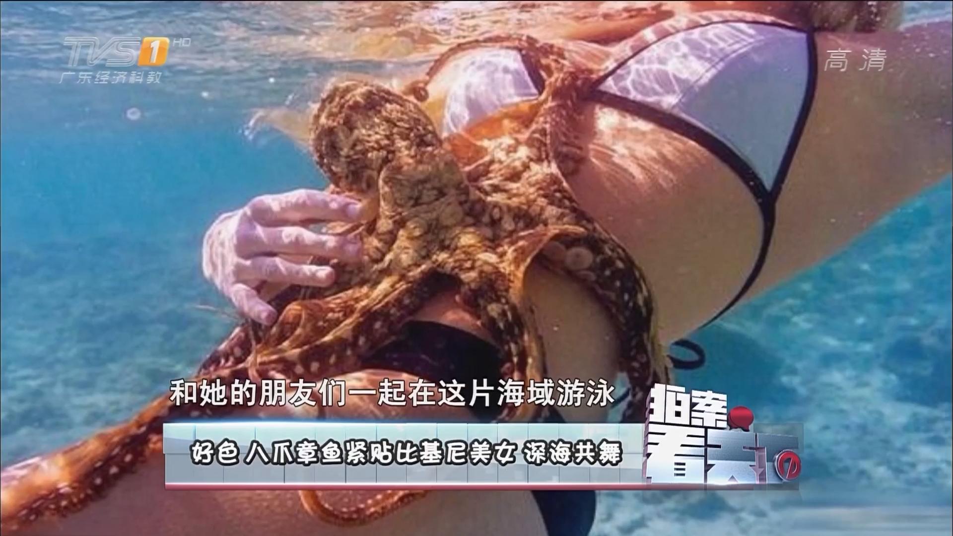 好色八爪章鱼紧贴比基尼美女 深海共舞