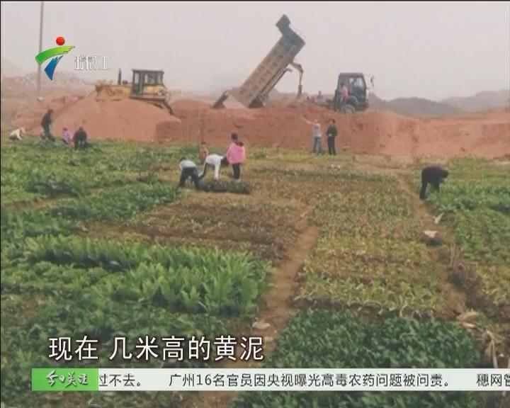 清远:广清产业园违法用地800亩被通报