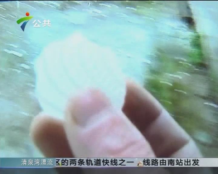 清远:冰雹来袭 村民屋顶被砸穿