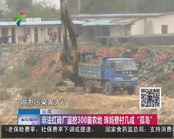 """汕尾:非法红砖厂盗挖300亩农地 珠妈寮村几成""""孤岛"""""""