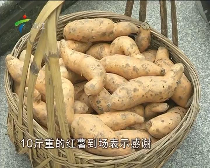 """清远:10斤番薯""""卖""""1300元 善款用于救助重症患者"""