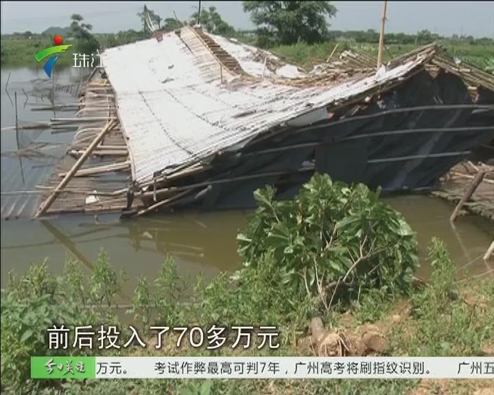 清远:狂风吹袭养殖场 农户损失50多万