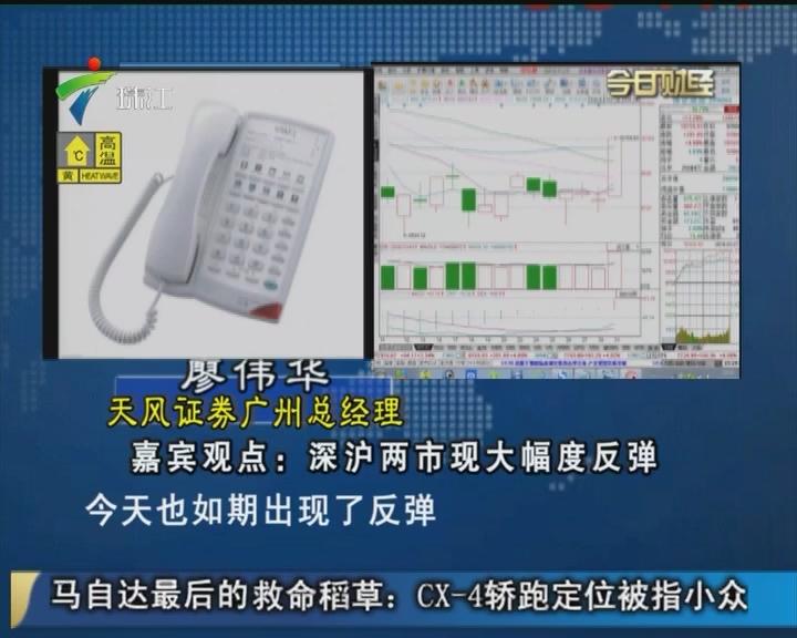 廖伟华:深沪两市现大幅度反弹