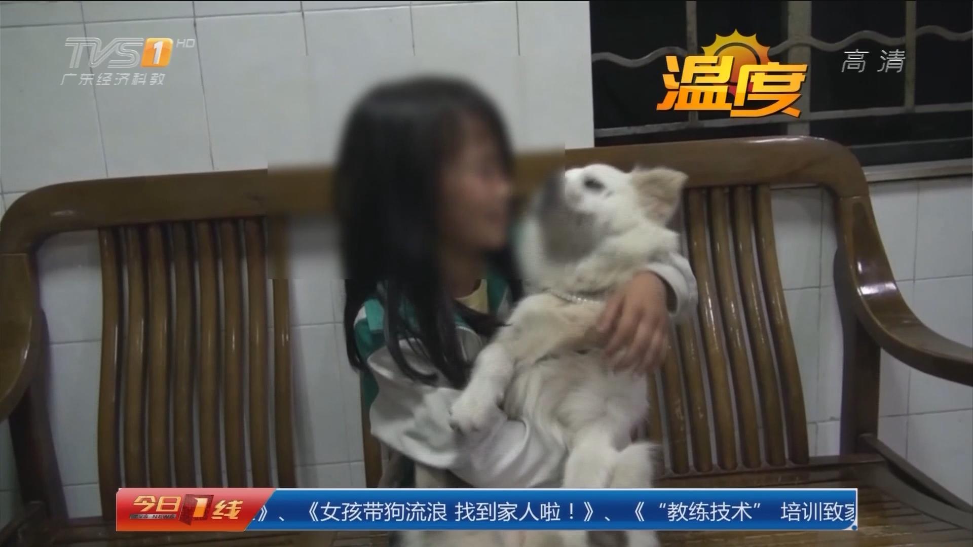 """系列專欄""""溫度"""":東莞 女孩帶狗流浪 找到家人啦!"""