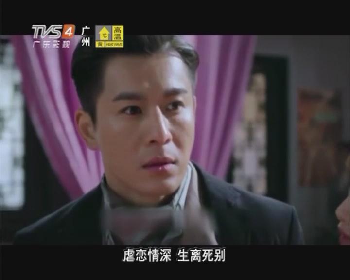 电视剧《昙花梦》精彩片段