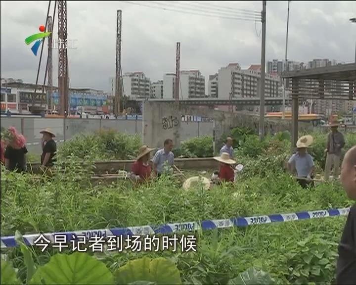 黄埔:网传女子被碎尸抛街 警方称并非碎尸