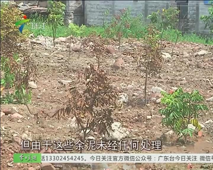 广州:建筑余泥随地倒 心虚种树难掩饰