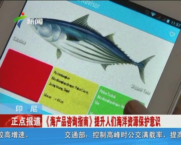 北京八达岭野生动物园老虎伤人