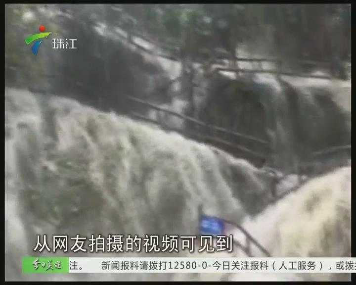 肇庆:鼎湖山突发山洪 游客被困半山腰
