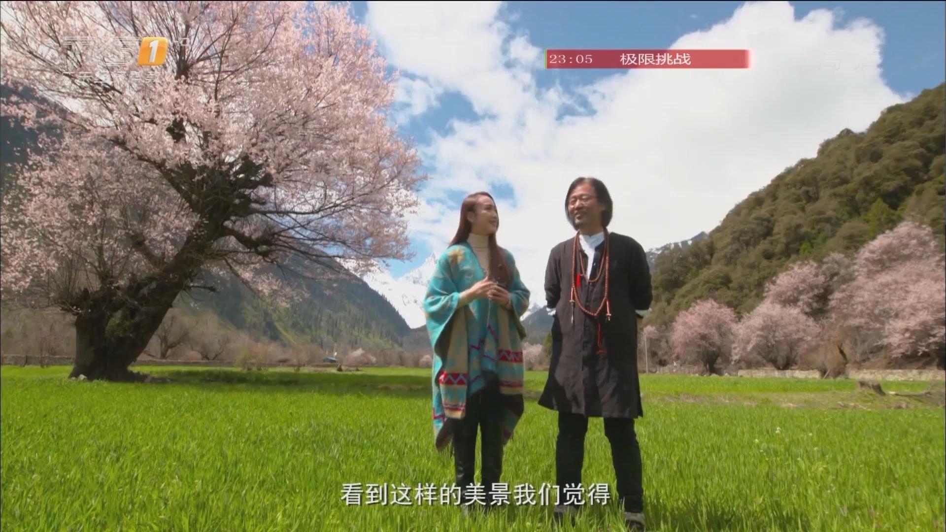 西藏之旅——波密桃花沟