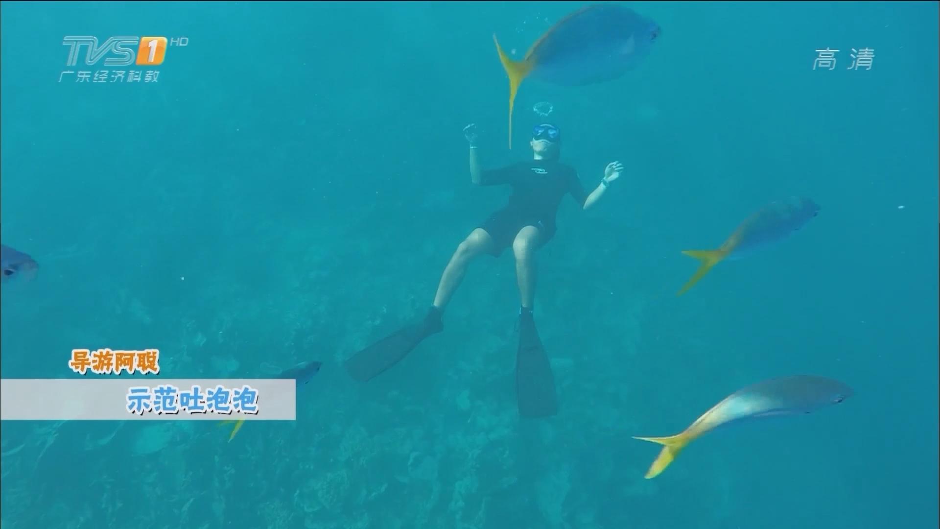 帕劳游——北石大断层任务 吐泡泡