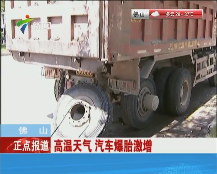 北京:八达岭野生动物园老虎伤人