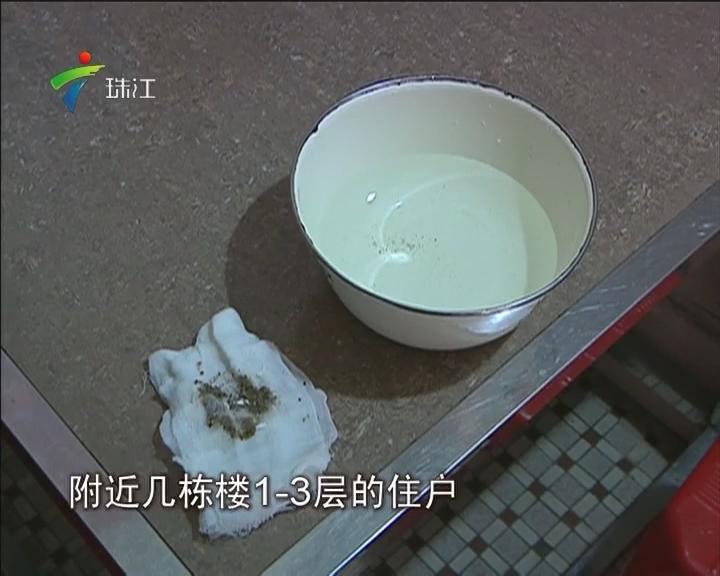 佛山:自来水掺沙 疑水管破裂所致