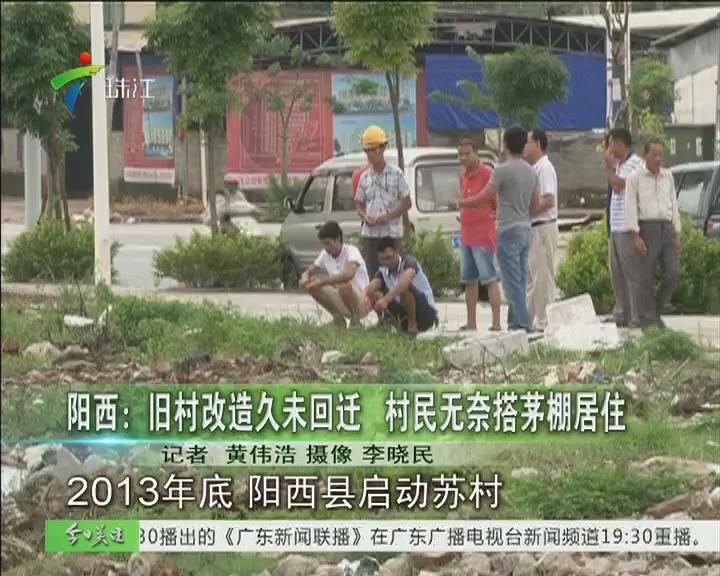 阳西:旧村改造未回迁 村民无奈搭茅棚居住