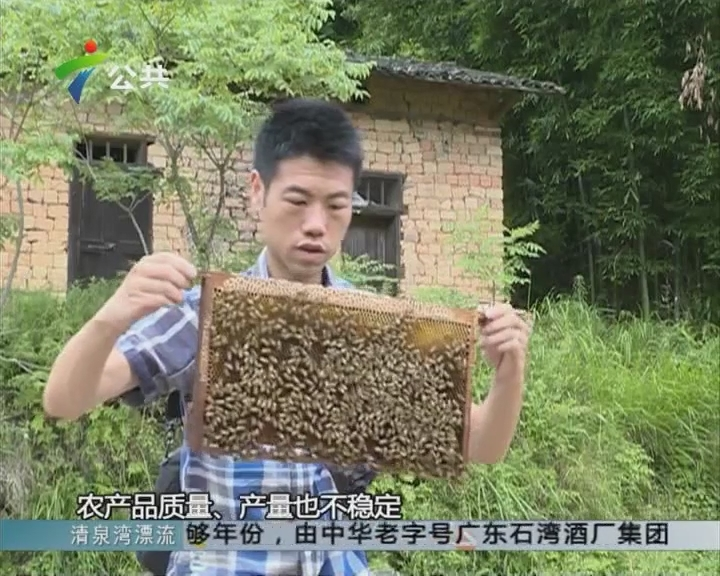 南雄:80后养蜂人的电商成功之路