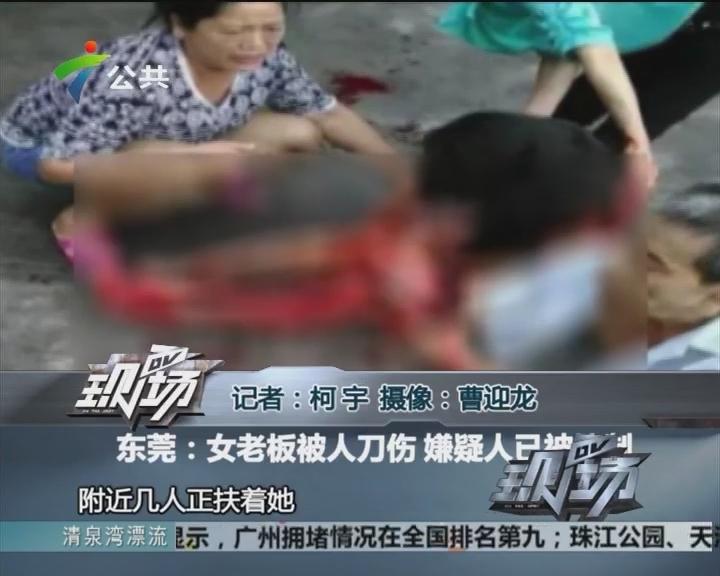 东莞:女老板被人刀伤 嫌疑人已被控制