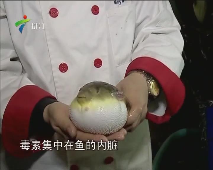 惠东:抓河豚煮面吃 小伙子险送命
