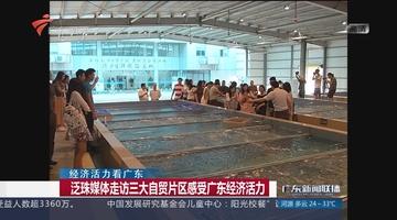 泛珠媒体走访三大自贸片区感受广东经济活力