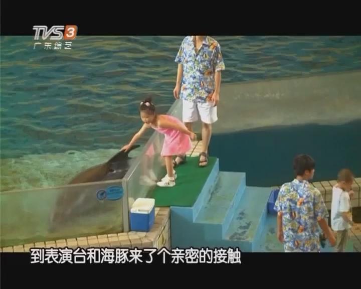 夏日好趣处:广州海洋馆