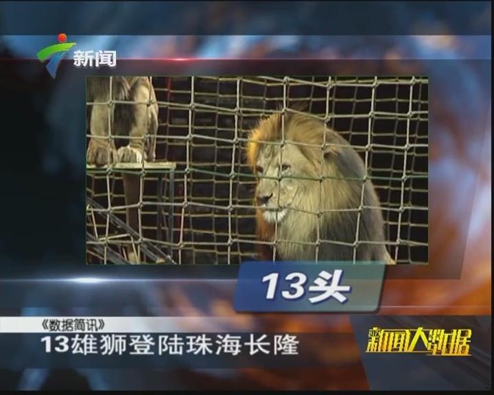 13雄狮登陆珠海长隆