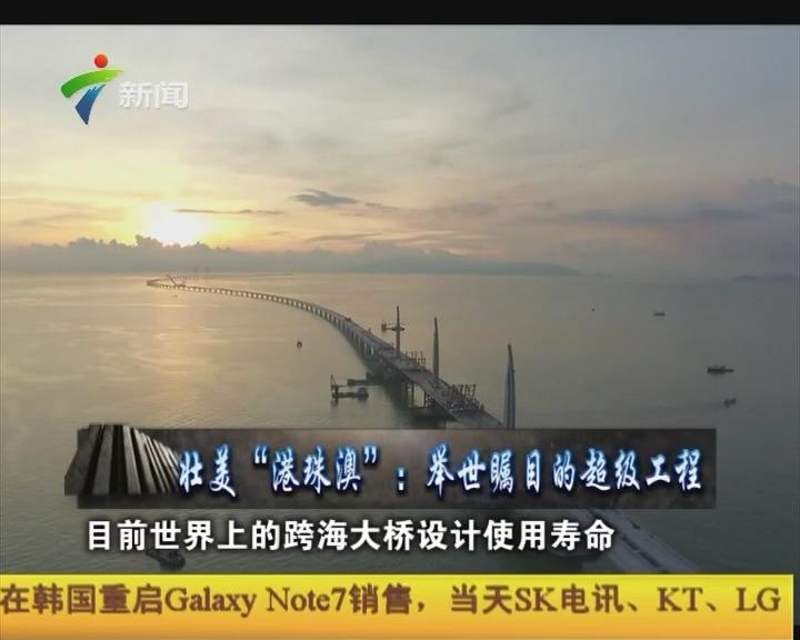 """壮美""""港珠澳"""":举世瞩目的超级工程"""