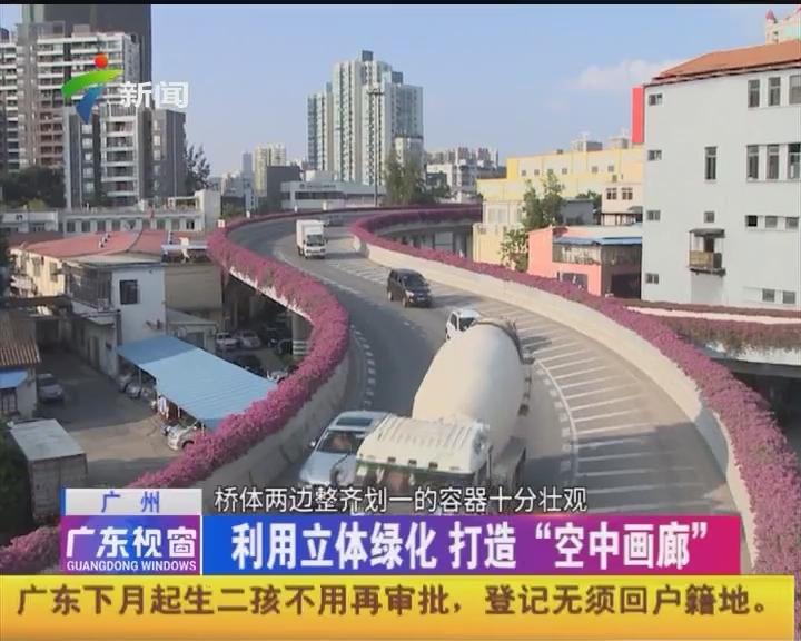"""广州:利用立体绿化 打造""""空中画廊"""""""