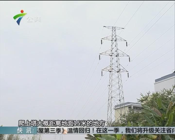清远:男子攀爬高压电线塔