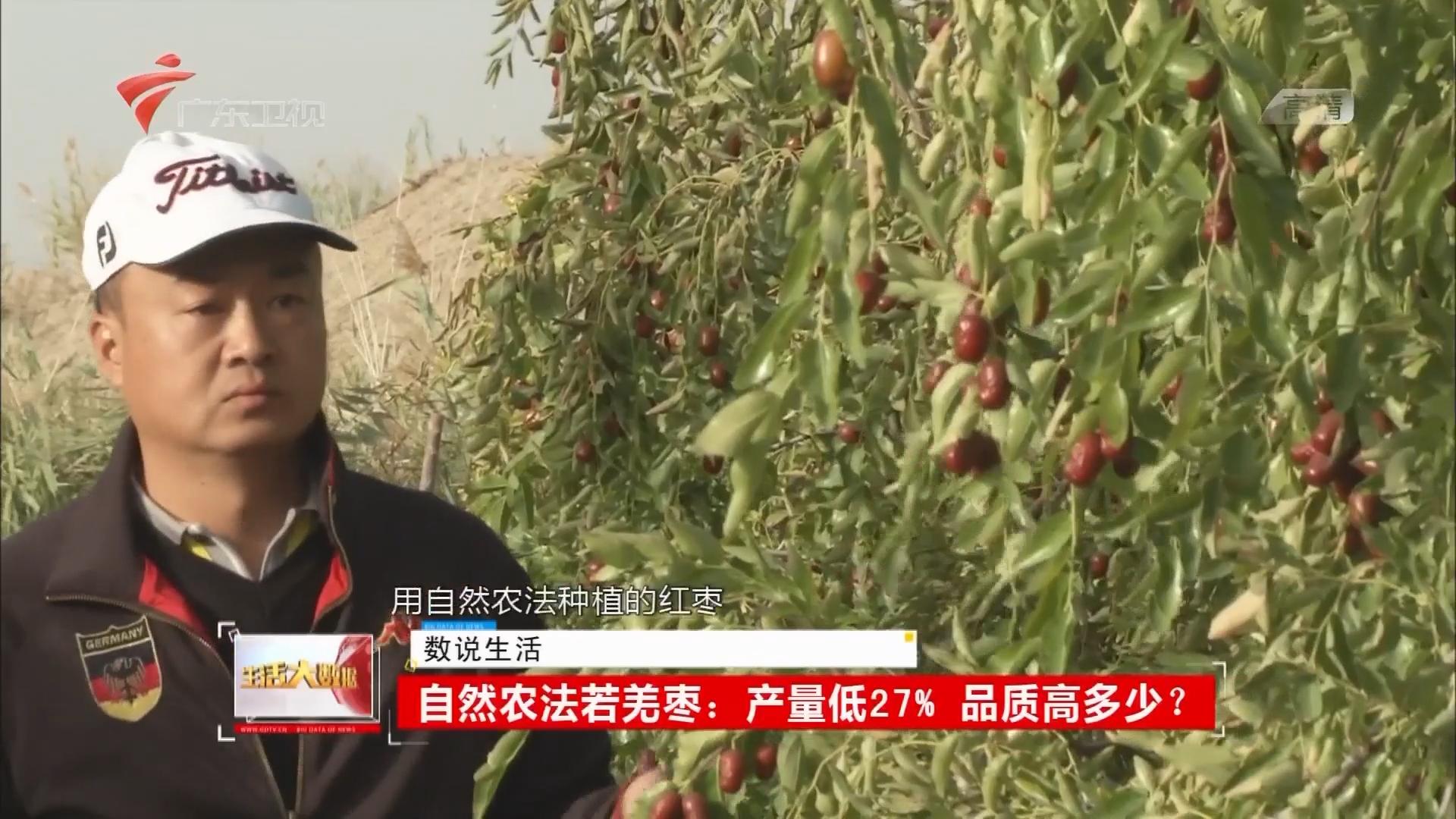 自然农法若羌枣:产量低27% 品质高多少?