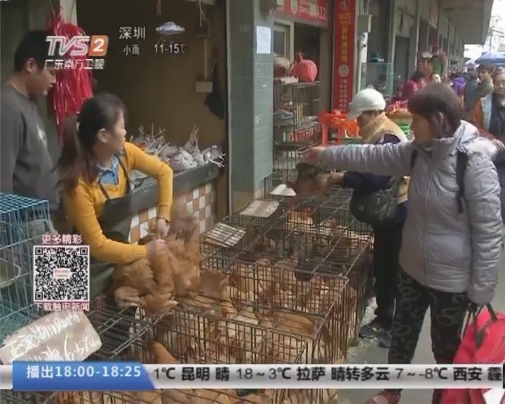 活禽休市 广州:明起禽类市场休市三天