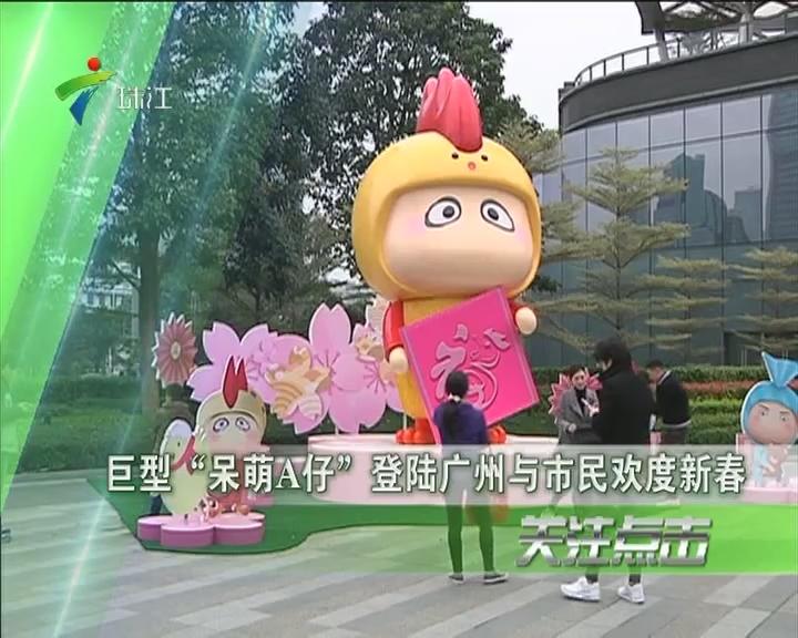 """巨型""""呆萌A仔""""登陆广州与市民欢度新春"""