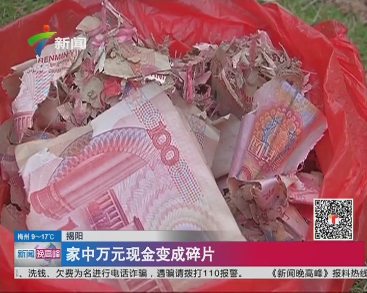 揭阳:家中万元现金变成碎片