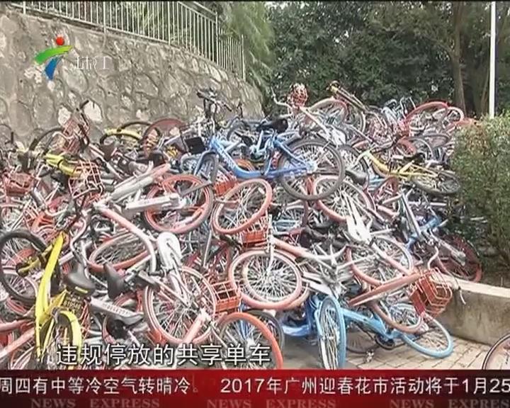 深圳:共享单车乱停放引矛盾 数百单车堆成山