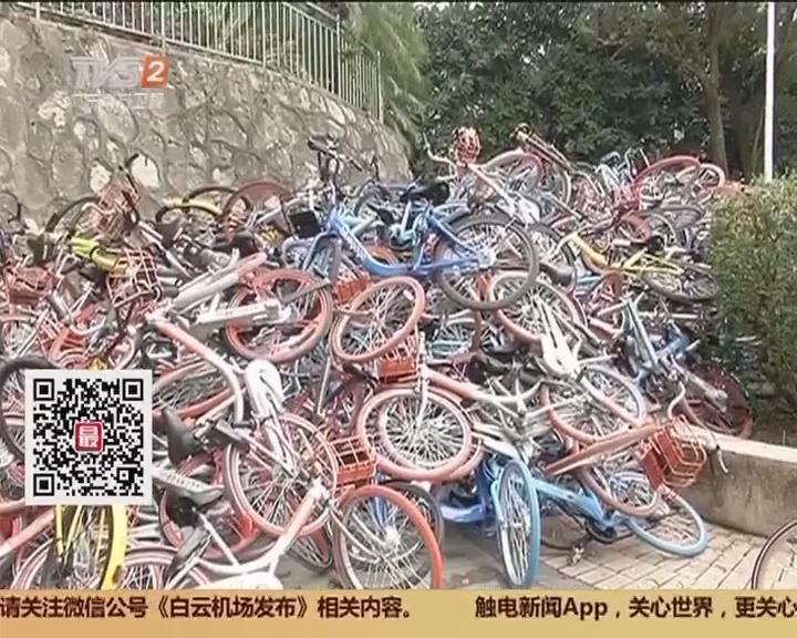 """深圳:乱停放惹人厌 数百辆共享单车遭""""毒手"""""""