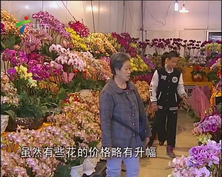 广州:花卉市场节前人气大旺
