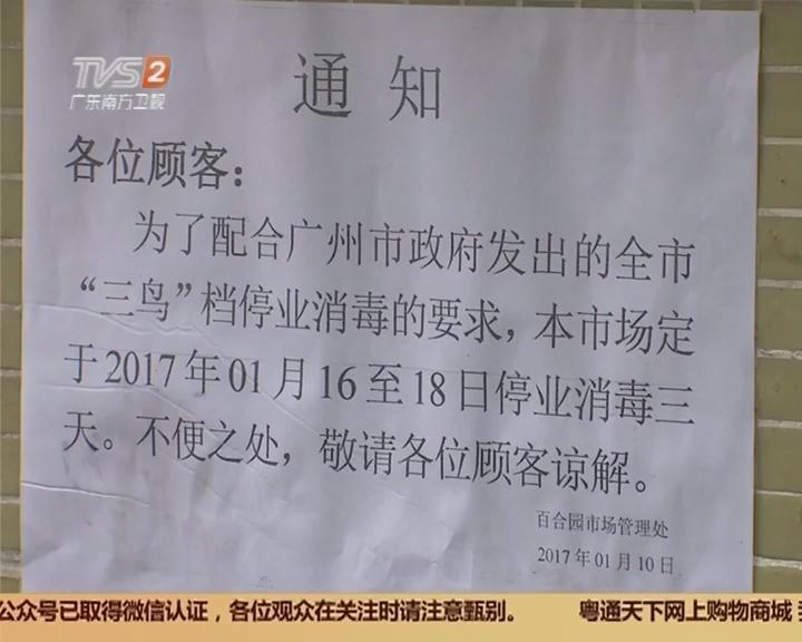关注H7N9流感疫情:广州今年首次活禽市场休市