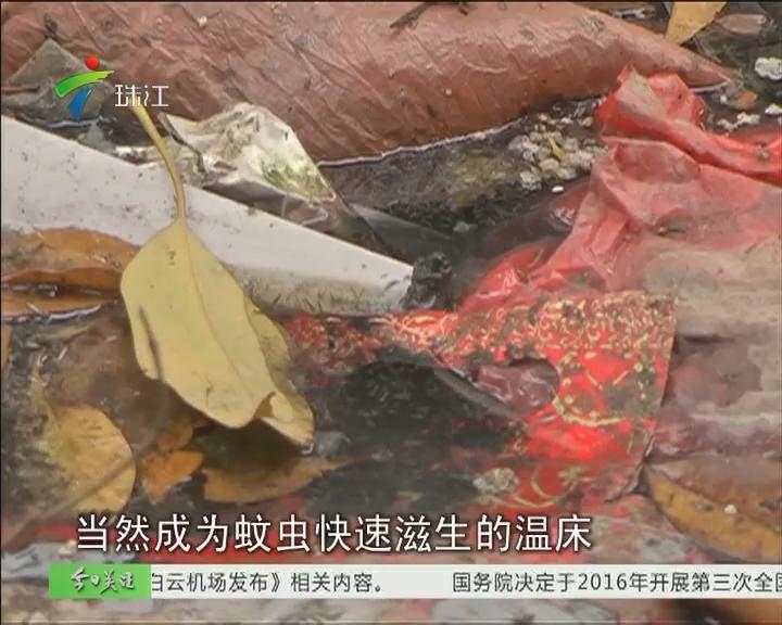 """广州:丽江花园蚊虫多如""""轰炸机"""""""