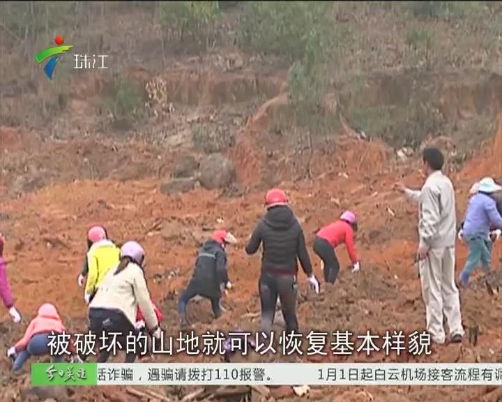 追踪:湛江垃圾填埋场地着手复绿