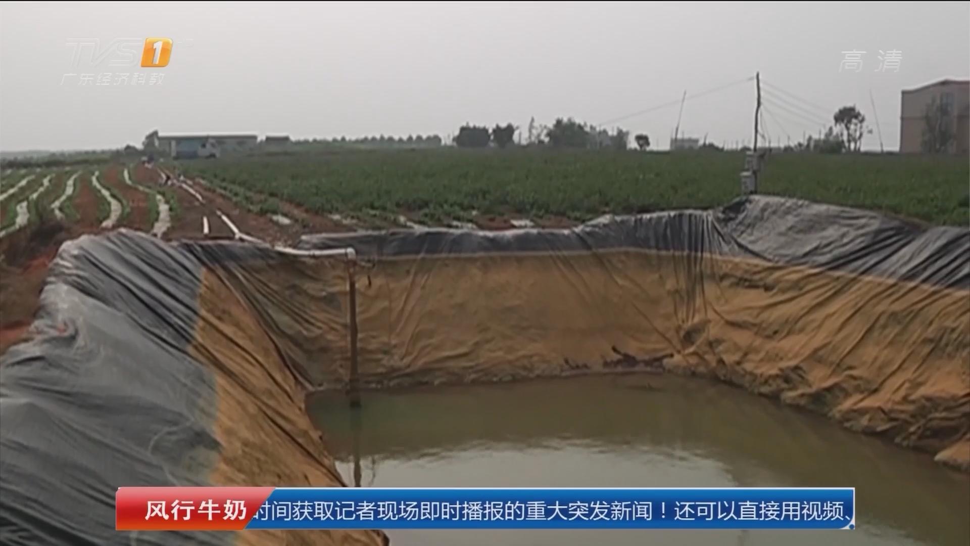湛江:弟弟落水 哥哥姐姐相救掉进灌溉池