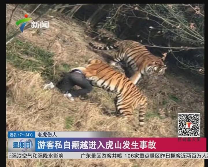 老虎伤人:宁波一动物园