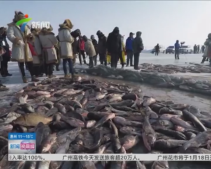 """新疆:乌伦古湖上的冰雪""""鱼""""宴"""