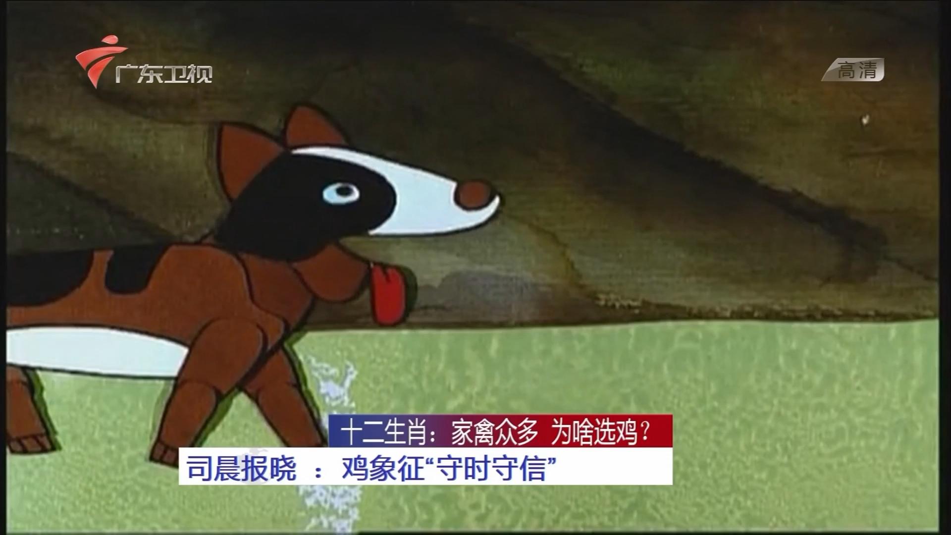 """十二生肖:家禽众多 为啥选鸡? 司晨报晓:鸡象征""""守时守信"""""""