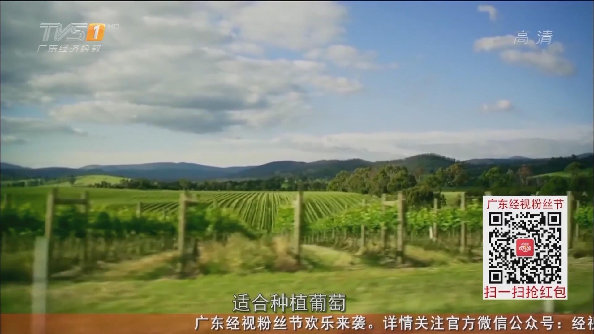 澳大利亚——亚拉河谷的罗富酒庄