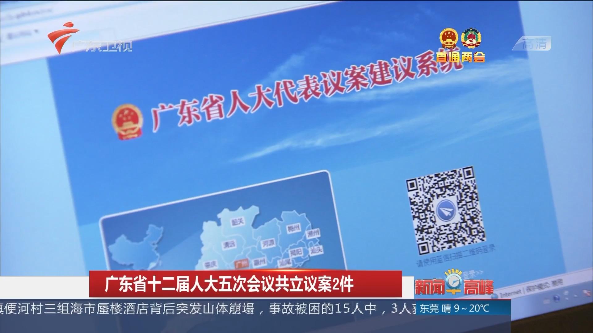 广东省十二届人大五次会议共立议案2件