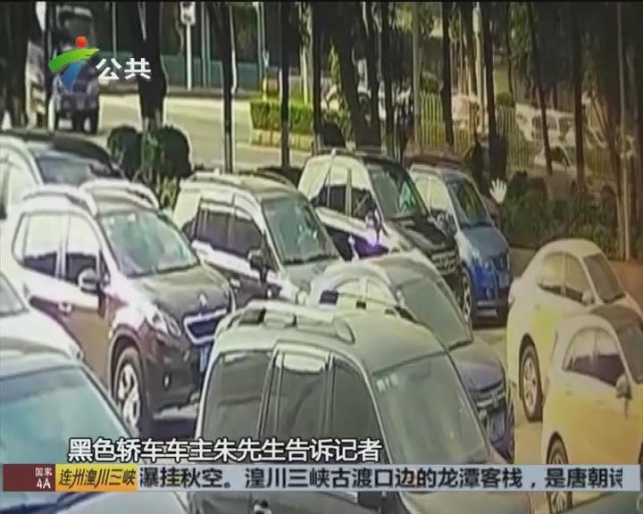 车主求助:男子砸车窗行窃 盗走两万多元财物