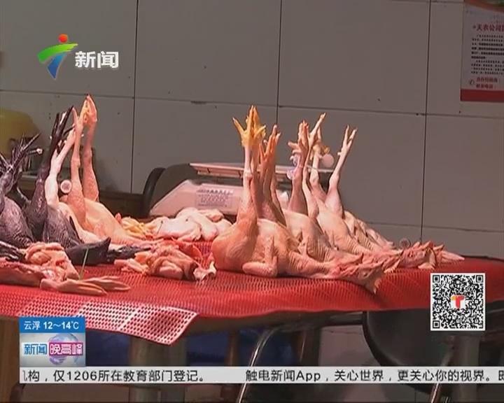 H7N9禽流感防控:白切鸡应煮熟透后才食用