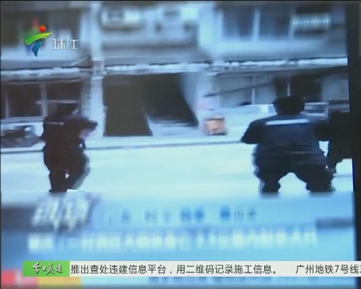 怀集:居民狂犬病发 警察射杀流浪犬只
