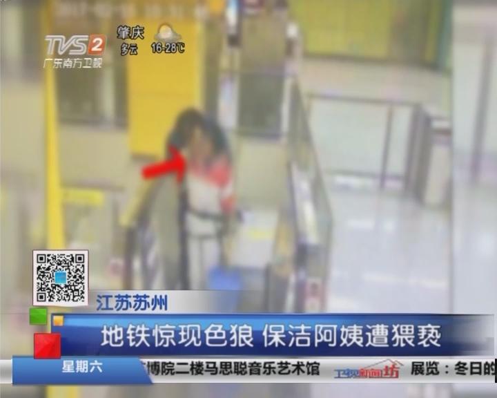 江苏苏州:地铁惊现色狼 保洁阿姨遭猥亵