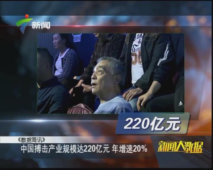 中国搏击产业规模达220亿元 年增速20%